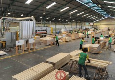 Ngành gỗ Việt Nam năm 2018 đơn hàng tăng - đảm bảo phát triển
